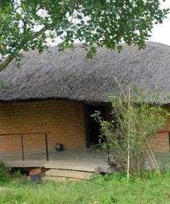 jackfuit villa tomodachi
