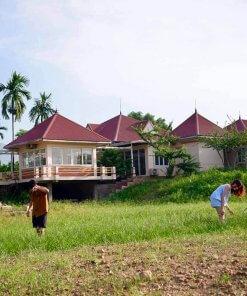 pomelo garden villa thạch thất